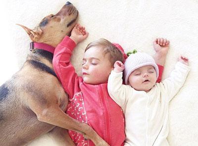 美国宝宝与宠物狗酣睡萌照走红网络